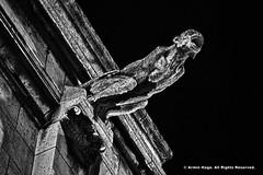 Gargoyle (Armin Hage) Tags: chimera gargoyle grotesque frenchgothic gothic montmartre sacrcur paris france arminhage