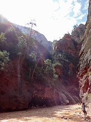 Narrows River (jeffho830) Tags: zionnationalpark narrows river flooded sunny canyon