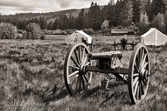 A Trio of Cannon (Zane's Photography) Tags: cannon reenactment houseonthemetolious river grass clouds canvas tents nikkond800 nikkor247028 captureone