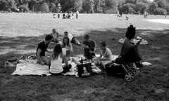 Picnic I (Joe Josephs: 2,861,655 views - thank you) Tags: joejosephs photojournalism streetphotography nyc joejosephsphotography blackandwhite newyorkcity newyorkcitystreetphotography centralpark centralparknewyork people parks cityparks urbanlandscapes urbannewyorkcity urbanparks