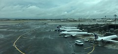 (don1775) Tags: 717 boeing terminal ewr boeing717 united avationphotography planespotting aviation transporation planes summer 2016 airport