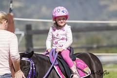 IMG_5206 (gavinglis) Tags: horses horse pony kia equestrian horseandrider childportrait aussieequestrian kiahequestrian