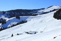 SkiWelt Wilder Kaiser- Brixental (Matyas Dubai) Tags: ski austria kaiser wilder brixental skiwelt