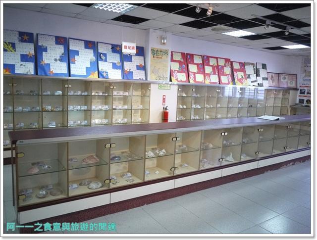 台東成功景點三仙台台東縣自然史教育館貝殼岩石肉形石image012