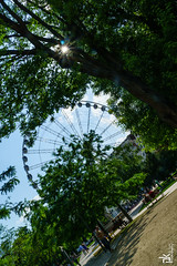 Budapest Eye (Peter Krasznai Photography) Tags: wheel hungary sony budapest alpha a6000 kraszipeti budapesteye selp18105g