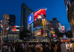 Shibuya crossing at night, Kanto region, Tokyo, Japan (Eric Lafforgue) Tags: road street city light people urban japan horizontal night buildings advertising outdoors photography japanese tokyo asia crossing exterior crowd shibuya citylife pedestrian illuminated billboard advertisement busy nighttime pedestrians billboards metropolis nightview popular adults advertisements groupofpeople crowded advertise urbanscene kantoregion advertisingsign colorimage buildingexterior urbanarea dogenzaka shibuyaku advertisingsigns 9people mixedagerange colourpicture japan161039