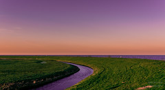 DSC_8101_Lr-edit (Alex-de-Haas) Tags: b sunset sun lake holland water netherlands beautiful dutch landscape zonsondergang meer flat dusk nederland thenetherlands mooi peninsula polder nederlands zon marken ijsselmeer plat landschap noordholland schemering vlak schiereiland