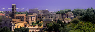 View From Palatino