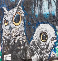owls wide open (PDKImages) Tags: street city windows girls urban streetart london art girl beauty graffiti women scenery rooftops faces skin camden stripes murals caged shoreditch walls contrasts owls