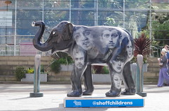 Herd of Sheffield elephant sculptures (26) (Simon Dell Photography) Tags: herdofsheffield herdof sheffield herd eliphants statues town city sculptures colorfull awsome 2016 trail see find them locations