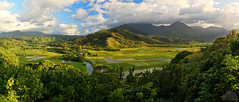 Princeville (PepperDog Photography) Tags: pepperdogphotography princeville kauai hawaii