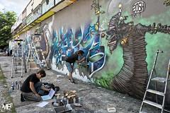 le mur DxOFP XT1+XF16-55_DSF2075 (mich53 - Thanks for 2700000 Views!) Tags: graffpark manteslaville graffitizm 2016 art graff tag artiste iledefrance evnement street xt1 fujifilm xf1655mmf28rlmwr spraypaint sprhfarbe wall wand graffiti murals