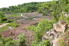 Kerncliff Park From Above (peterkelly) Tags: digital ontario canada northamerica canon 6d burlington kerncliffpark quarry wetland marsh boardwalk sumac cliff niagaraescarpment cootestoescarpmentecoparksystem forest tree