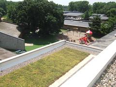 Breck School STEM Green Roof (Minneapolis, MN) (LiveRoof) Tags: school minnesota minneapolis sustainability greenroof livingroof bachmans plantedroof liveroof vegetativeroof breckschool berwaldroofing