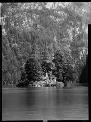 Christlieger (_landes) Tags: linhoftechnikaiv largeformat landscape film analog bw schneiderkreuznach knigssee symmars360mm68