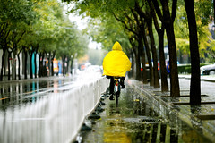 Raincoat~! (SidhArcheR) Tags: raincoat beijing mainlandchina chinese rain weather rainyseason drizzle drops composition sidharcher siddharthanraman 6d
