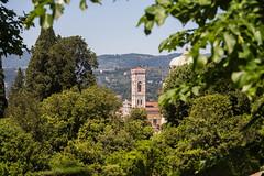 _DSC3796 (Dario Morelli) Tags: boboli pitti giardini palazzo firenze maggio 2016