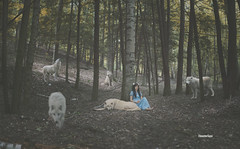 Wolf Pack (SnowiesArt) Tags: dark art girl wolf wolves nature forest woods digitalart digitalmanipulation photoart surreal fantasy fairytale