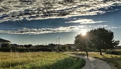 (Cristina Birri) Tags: palmanova passeggiata udine friuli tramonto sunset alberi paese nuvole clouds sole sun