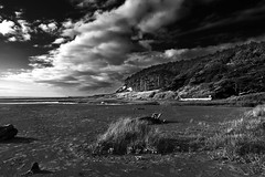 Copalis Beach, Olympic Peninsula, Washington State (slightlysoggysoul) Tags: skancheli blackandwhite blackandwhitephoto beach pacific ocean