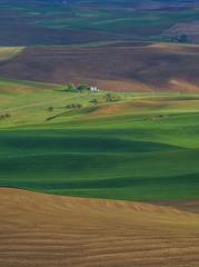 Happy World Photography Day !! (shalabh_sharma7) Tags: green palouse washington usa travel fields sonya77ii tamron