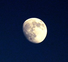 DSC_0010e ~ Luna (BDC Photography) Tags: pipecreek texas usa luna moon nikon nikondlsrcamera nikond200 nikonafsnikkor300mmf4difedlens slikpro700dxtripod