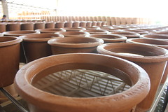 Ecofiltro pots holding water - Charlie on Travel (CharlieOnTravel) Tags: ecofiltro guatemala tour sustainable antigua water filter pots eco