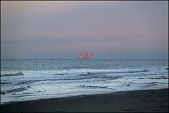 orange (Elly Snel) Tags: ameland island nl booreiland oilrig zonsondergang sunset oranje orange northsea noordzee blue blauw strand beach
