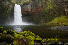 Abiqua Falls, Oregon, USA (Scott Carpenter Photography) Tags: fall wet rock waterfall moss spring pacific northwest falls waterfalls mtangelabbey abiquacreek