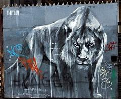 Eyes of the Tiger (PhotosBoss) Tags: streetart brick london art tags lane