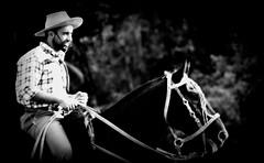 Meu amigo Bolacha (Eduardo Amorim) Tags: brazil horses horse southamerica brasil criollo caballo cheval caballos cavalos pferde cavalli cavallo cavalo gauchos pferd riograndedosul pampa campanha brsil chevaux gaucho cavall  amricadosul fronteira gacho amriquedusud  gachos  sudamrica suramrica amricadelsur sdamerika crioulo caballoscriollos criollos  pilchasgauchas americadelsud pilcha dompedrito crioulos cavalocrioulo americameridionale caballocriollo pilchasgachas eduardoamorim cavaloscrioulos pilchagacha pilchagaucha
