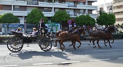 Calles y Feria (DAGM4) Tags: españa horse color primavera caballos sevilla spain europa fiesta colores andalucia sur tradicion feriadesevilla feriadeabril