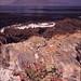 ZA Robben Island 0111 001