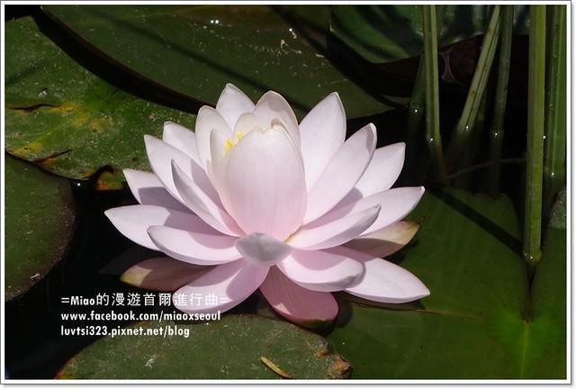 벽초지문화수목원19