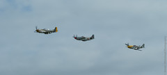 P51D Mustang's (Steven Whitehead) Tags: canon flying fighter aircraft airshow b17 duxford bomber airfield airoplane iwm 2015 airfields flypast 1dx imerialwarmuseum eos1dx canon1dx