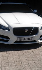 16 plate JAG NOT LAS (robertbeale999) Tags: jag