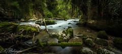 Tine de conflens 2 (lrugg212) Tags: water switzerland eau suisse swiss rivire zen tine vaud leefilter conflens nothailande