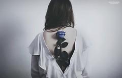 *** (AgataKulawiecFotografia) Tags: blue portrait woman flower rose back