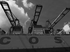 P1060057 (lychee_vanilla) Tags: port harbour hamburg hh hafen elbe hanse hansestadt maritim