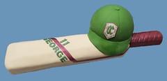 (rolipayne) Tags: school cake bat cricket cap recent roli ccjb clairescourt