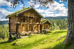 I love Norway (Richard Larssen) Tags: richard richardlarssen stabbur norway norge norwegen nature grass green grimdalstunet larssen landscape sony scandinavia sonyalpha telemark tokke sel1635z a7ii teamsony