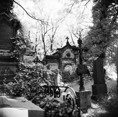 Olansk hbitovy (holtelars) Tags: mamiya mamiyac330 tlr twinlensreflex twinlens mamiyasekor 6x6 square squareformat 120 film analog rollei rolleiretro 400s 400iso mediumformat analogue blackandwhite classicblackwhite bw monochrome filmforever filmphotography compardr09spezial r09spezial rodinalspecial studional larsholte homeprocessing jobo autolab atl1500 olanskhbitovy cemetery praha prague czechrepublic czechia 65mm f35