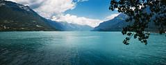 Thun lake (pha nguyen) Tags: switzerland summer interlaken blue europe travel