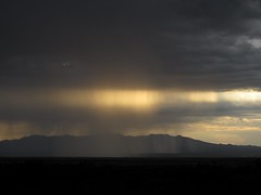 Rays in the Rain (zoniedude1) Tags: arizona sky clouds rain sunset monsoon raysintherain summer evening downpour sunbeams seaz cochisecounty landscape view arizonamonsoon skyscape thunderstorms stormclouds summermonsoon heavyrain tstorm monsoon2016 whetstonemountains sanpedrovalley southeastarizona landofcochise 5200ftelevation skyislands outdoors exploration adventure discovery wildplaces outinthewild southwest nature canonpowershotg12 pspx8 zoniedude1 earthnaturelife