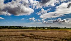 Near Ashfordby (Peter Leigh50) Tags: landscape leicestershire ashfordby meridian