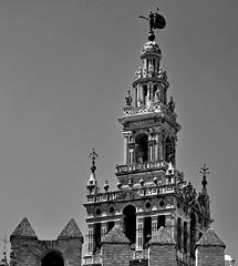 'Proverbis' (EZTD) Tags: eztd eztdphotography eztdphotos photos fotos nikond90 august2016 sevilla seville spain spana espana espagne spanien sevilha