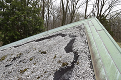 Washed out gravel reveals the underneath asphalt lining. (The Architectural Conservation Laboratory -) Tags: artsbuilding eaves flashing northwest newhope pennsylvania