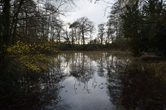 Baddesley Clinton, Warwickshire (bigjohn23582) Tags: baddesleyclinton baddesley clinton countryside country december warwickshire winter manorhouse statelyhome house history nationaltrust nature england
