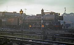 Krupp Class D52 2-8-2 at Yogyakarta station Indonesia.  July 1976 (Brit 70013 fan) Tags: germany indonesia java eisenbahn steam german yogyakarta jogjakarta 1976 steamengine krupp 282 dampfmaschine d52 d52class