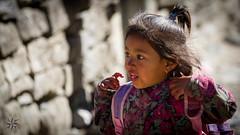 Bagarchhap (Alexandre Carpentier) Tags: nepal snow trek canon eagle altitude rando peak 7d neige annapurnacircuit annapurna millet npal treking nilgiri pisang manang marpha poonhill tilicho annapurnaii machhapuchhre manaslu ghandruk ghorepani dharapani thorongla bhulbule landruk westernregion 5416m thorongphedi bluegoats besishahar diomax